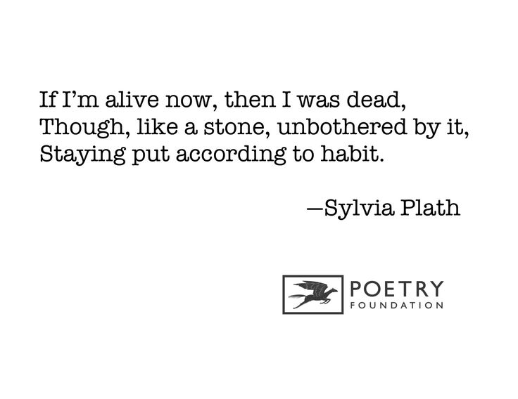 "a literary analysis of the poem in plaster by sylvia plath Free essay: the figurative language in the poem ""daddy"" by sylvia plath can be   the poem such as symbolism, imagery, and wordplay, plath reveals hidden."