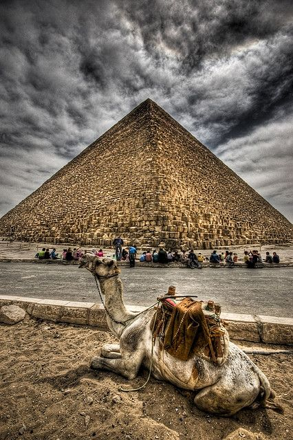 Pyramids, Cairo, Egypt SHARE YOUR TRAVEL EXPERIENCE ON www.thetripmill.com! Be a #tripmiller!