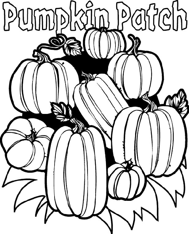 bold line coloring pages | free printable Pumpkin Patch coloring page- bold lines ...