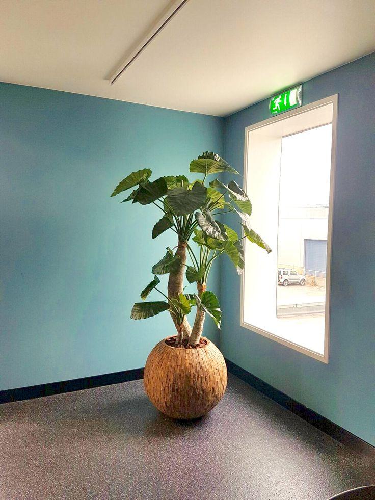 Alocasia kunstplant in Cemani bowl plantenbak.