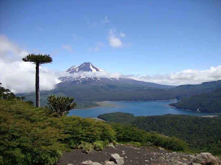 Lago Conguillío desde Sierra Nevada, Parque Nacional Conguillío, Chile.