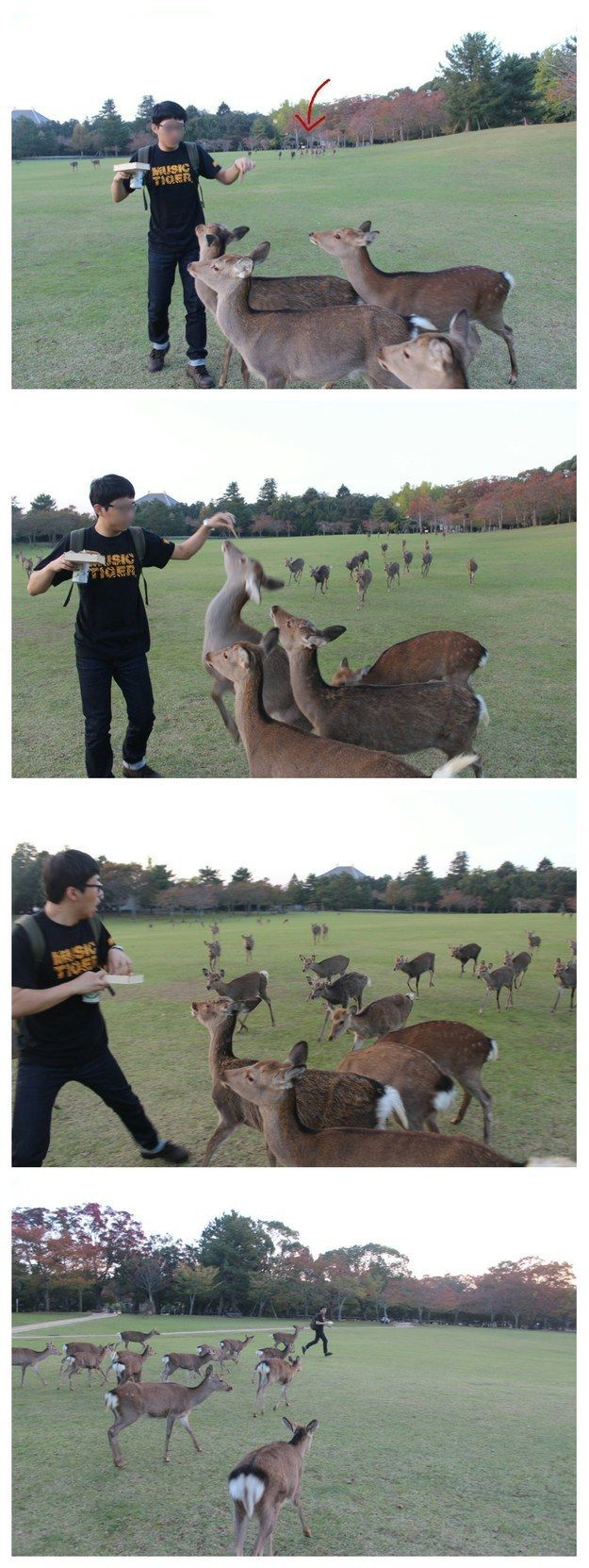 This guy who was just trying to feed a couple of deer. | 26 People Who Failed Harder Than You Ever Thought Possible