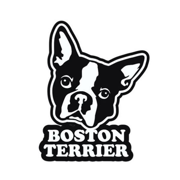 Show Your Love For Boston Terriers By Adding This Decal To Your Car Type Of Sticker Car Body Item Wi Boston Terrier Boston Terrier Art Boston Terrier Clothes