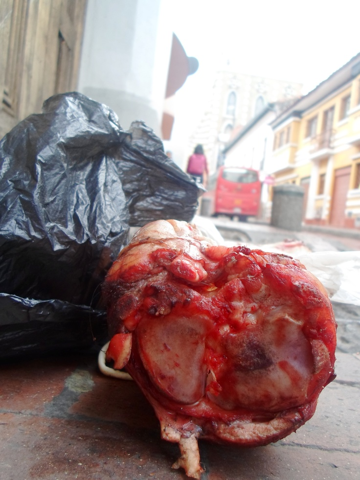Is it a human's bone?  That is what you get to see at 7h00 in La Candelaria.
