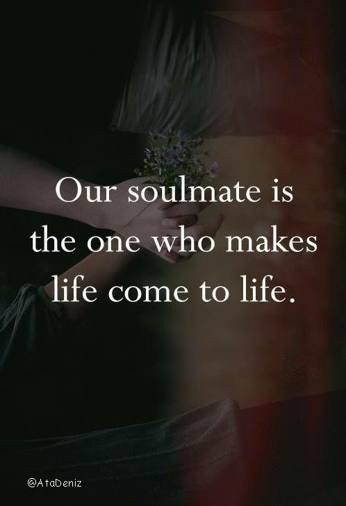 Soulmates Love Quotes About Life: Best 25+ Not About You Ideas On Pinterest