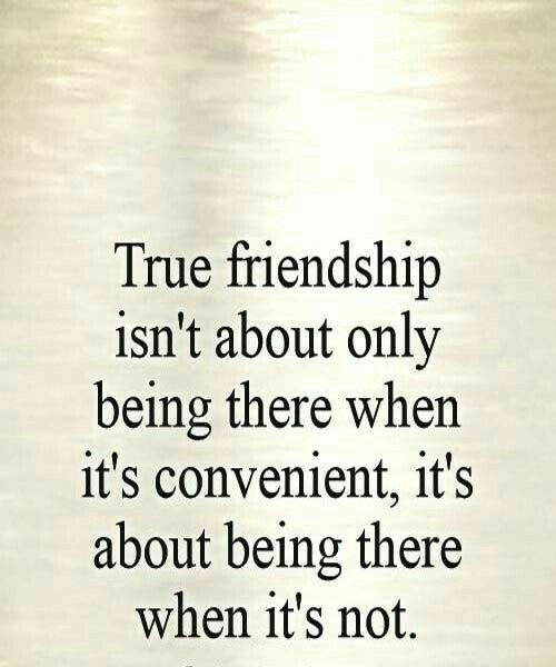 best friendship quotes images friendship quote  17 best friendship quotes images friendship quote friendship and true friendships