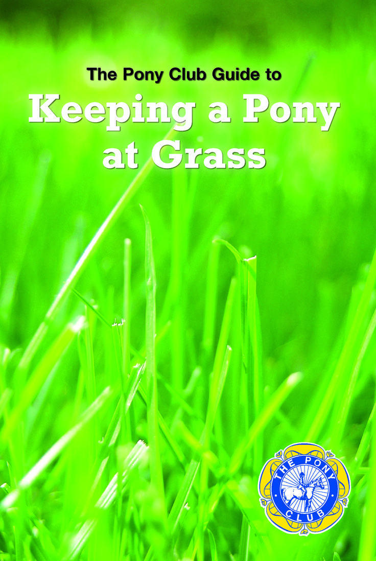 Pony Club Guide to Keeping a Pony at Grass | Quiller Publishing. Keeping a Pony at Grass is one of The #Pony #Club's longest-lasting popular publications. First published over 50 years ago, it tackles it's subject - keeping ponies in good order in safe and satisfactory surroundings - with the utmost simplicity and good sense. #country #books #pony #grass #management