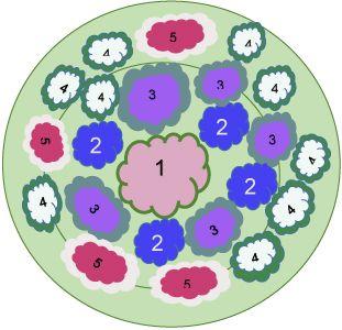 где 1 - вишня; 2 - луковичные; 3 - медуница; 4 - Ландыш майский; 5 - гвоздика травянка.