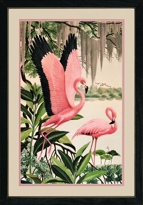 Vintage Flamingo Art - Pink, green, and black trim.