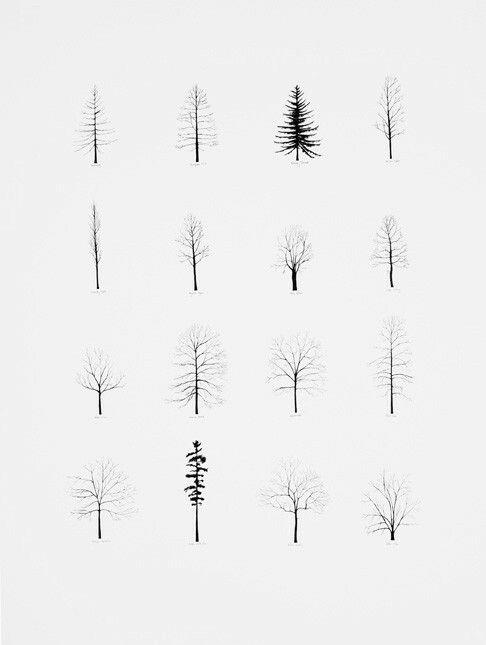 Line Drawing Tree Tattoo : Best ideas about line tattoos on pinterest flower