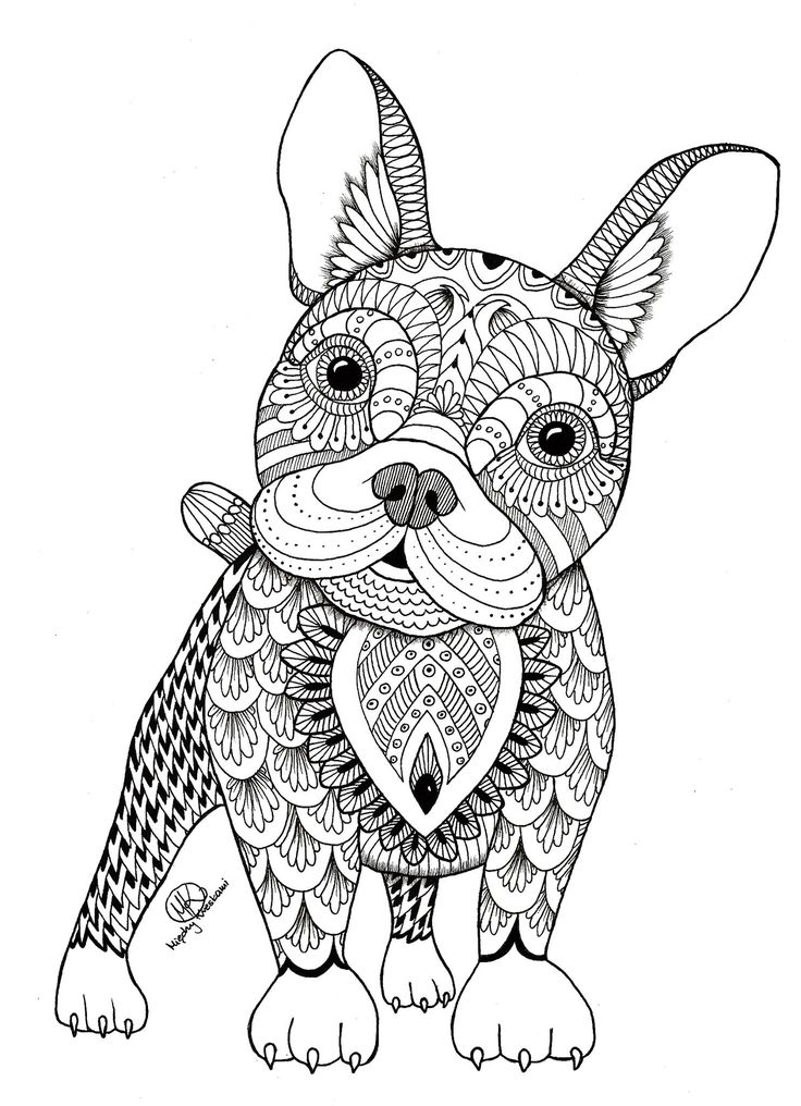 377 best COLORING BOOK : ANIMALS / NATURE / WILDLIFE images on ...