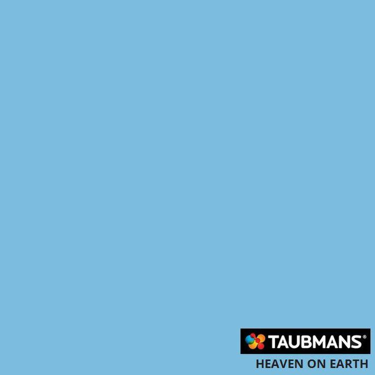 #Taubmanscolour #heavenonearth