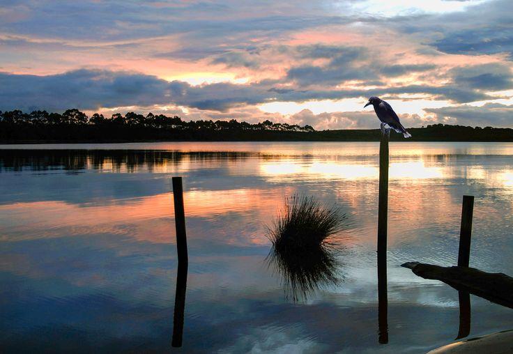 strahan tasmanie (fjh)
