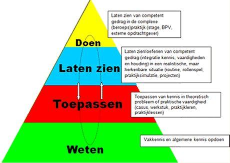 De beroepsbekwaamheid kan volgens Miller (1990) worden onderscheiden in vier niveaus De onderste laag van de piramide vormt het fundament voor de bovenliggende laag. Er wordt gesproken over beroeps...