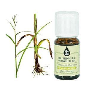 HUILE ESSENTIELLE DE CITTRONNELLE DE JAVA : En soins cutanés, l' #huileessentielle de citronnelle de Java régule les #peauxgrasses et acnéiques. Elle calme également les #douleurs d'articulations et de tendons (rhumatisme, tendinites, arthrite). L'huile essentielle de citronnelle de Java peut être également utilisée en olfactothérapie. Lire plus sur http://www.lca-aroma.com/les-citronnees/108-huile-essentielle-de-citronnelle-de-java-sauvage.html