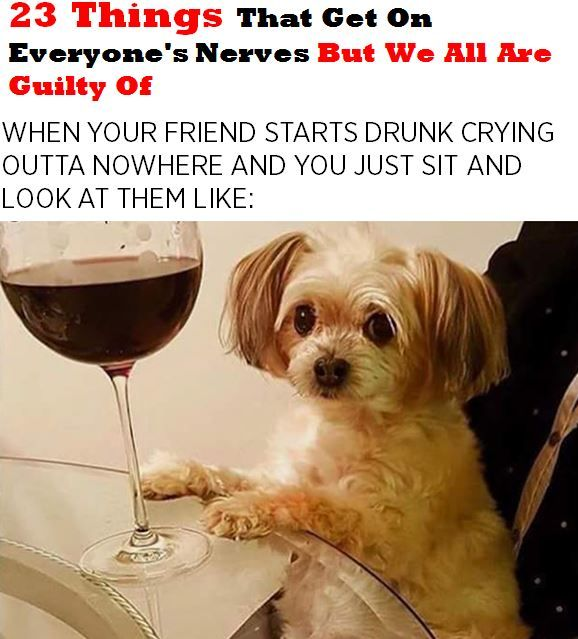 23 Things That Get On Everyone's Nerves But We All Are Guilty Of http://omgshots.com/3703-23-things-that-get-on-everyones-nerves-but-we-all-are-guilty-of.html