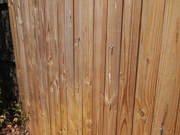 DIY Trellis – Make A Trellis On Your Fence Out of Wire