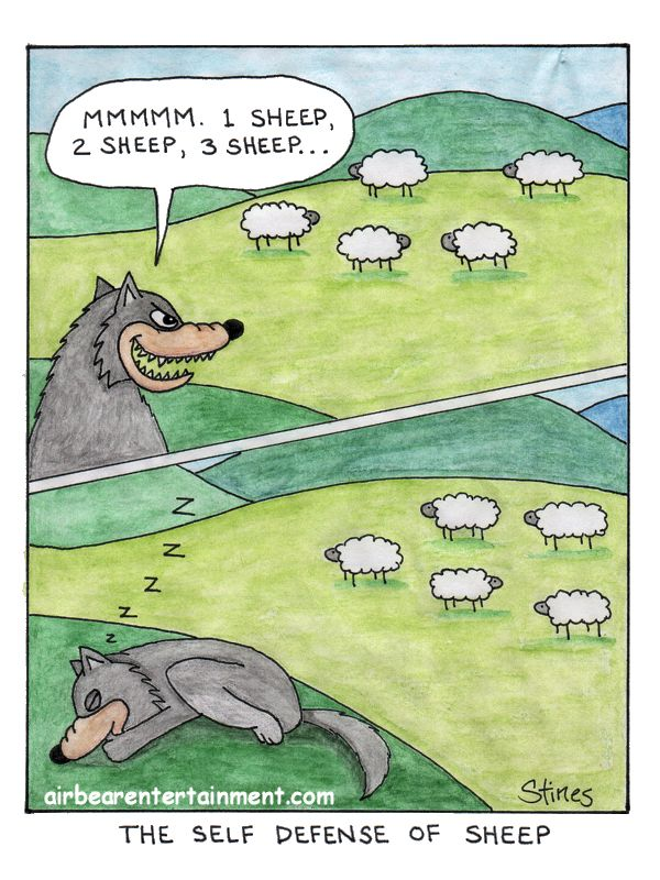 The Self Defense Of Sheep [OC]
