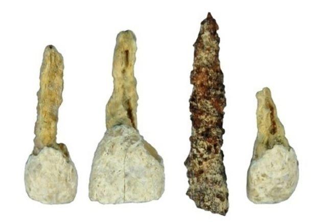 El implante dental más antiguo de Europa http://www.elmundo.es/ciencia/2014/06/02/53885651e2704e0a308b4571.html