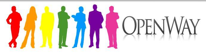 Lowongan Kerja Presales Consultant, Junior Consultant – OpenWay Group Terbaru Februari 2017