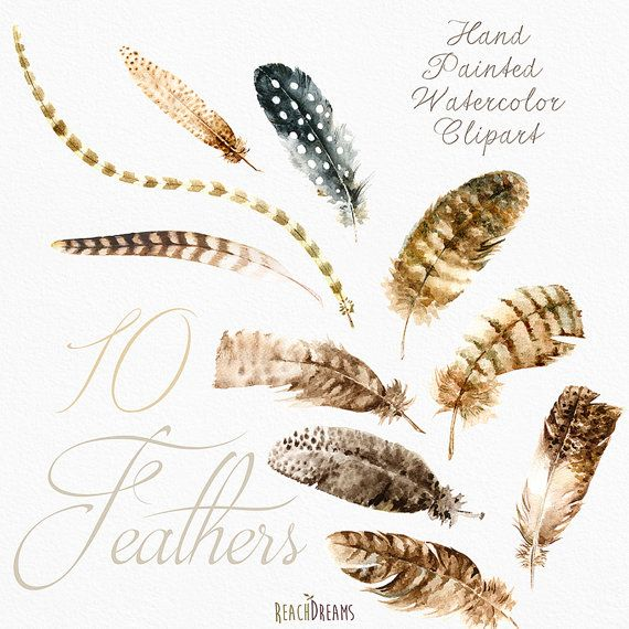 Feathers Watercolor Clipart. Hand painted DIY от ReachDreams