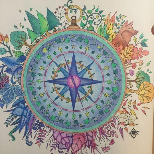 Coloring Books Colored Pencils Zentangle Doodles Enchanted Forest Color Blocks