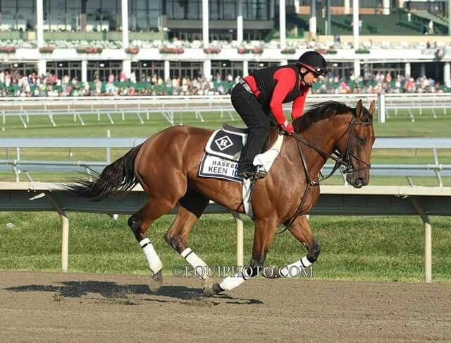 horse racing tomorrow