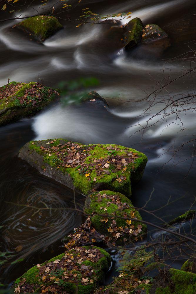 Im Badetal bei Thale im Harz - Herbstimpressionen!