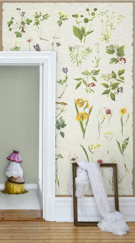 Beautiful botanical wall. seventeendoors: nostalgic