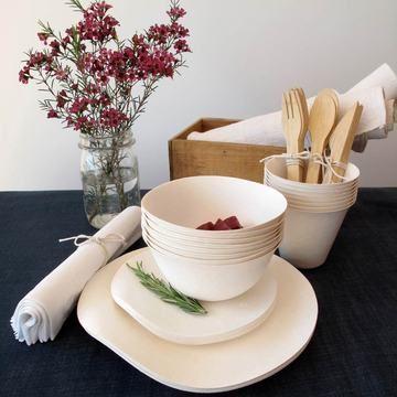 WASARA biodegradable bamboo tableware