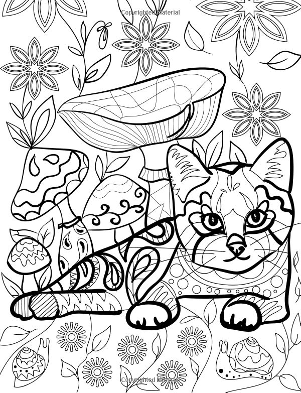 coloring pages for adults finished   Colorful Cats 2: Coloring Books For Adults Featuring Over ...