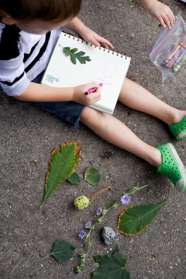 Neighborhood Field Study: bring notebooks and crayons and collect leaves