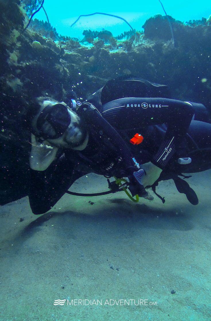 Draw Me Like One Of Your French Girls Meridianadventuresdive Indonesia Rajaampat Scubadiving Exploremore U Scuba Diving Marina Resort Padi Diving
