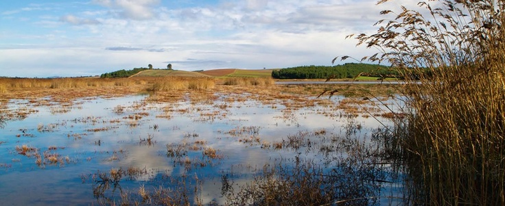 Sani Wetlands.  Location: Halkidiki, Greece