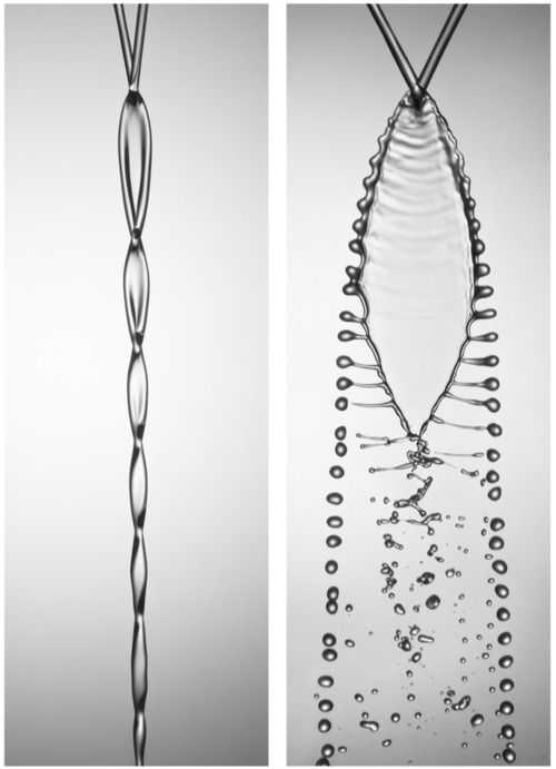 """Two jets of sugar syrup collide and interact to form very different patterns.  On the left, the two jets have a low flow rate and create a chain-like wake.  The jets on the right have a higher flow rate and produce a liquid sheet that breaks down into filaments and droplets. The result is often likened to fish bones. (Photo credit: Rebecca Ing)"""