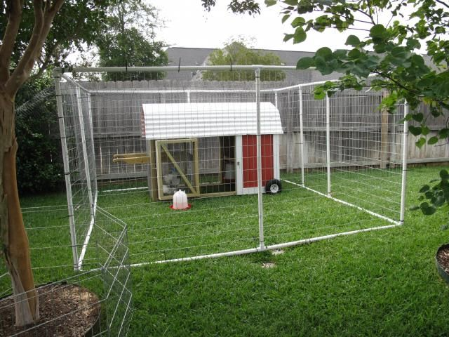 Best 25 chicken runs ideas on pinterest chicken houses for Chicken coop made from pvc