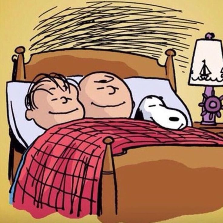 'Theres nothing like a 'Sleepover' with friends', Charlie Brown, Linus & Snoopy.❤