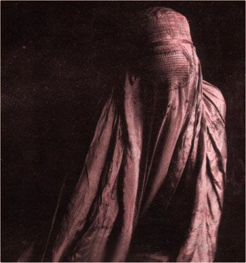 Purple Burqa.
