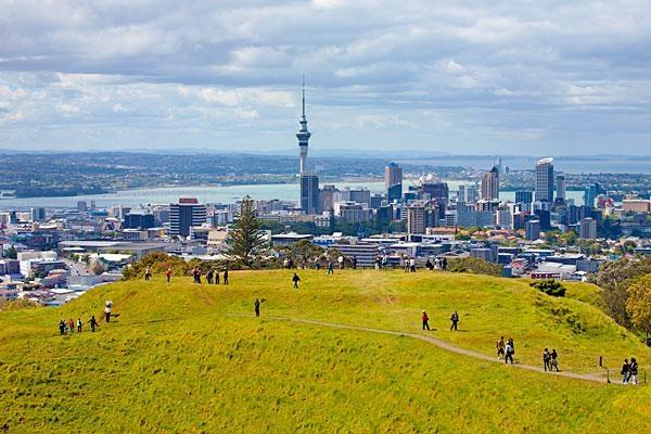 Auckland, New Zealand  www.brayola.com