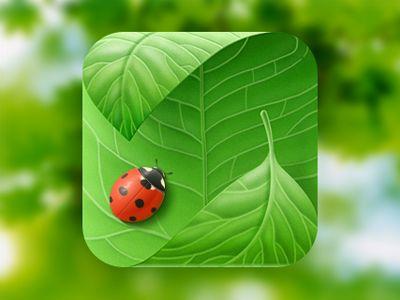 Dribbble - Leaf Icon by Alex Zotov