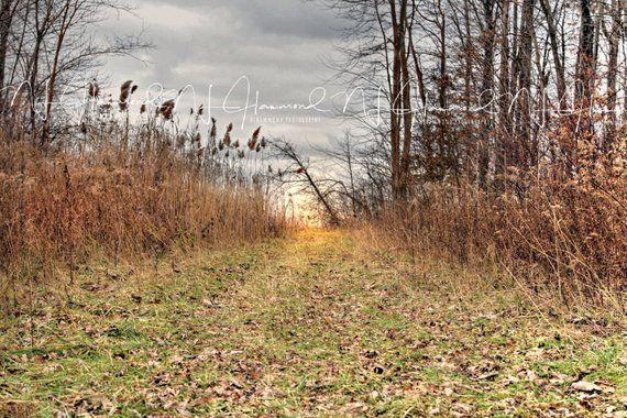 Fall Digital Backdrop Path Background Wedding Background Etsy In 2020 Digital Backdrops Photoshop Backgrounds Photoshop Backdrop