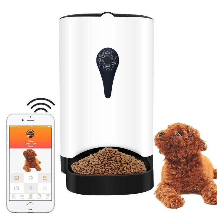Automatic Smart Pet Feeder with Wireless Camera for Small and Medium Dogs & Cats