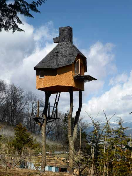 Terunobu Fujimori's Tea house was erected upon 2 trees that were cut and brought in from a nearby mountain. In order to reach the room, guests must climb up the freestanding ladders propped up against the tree.
