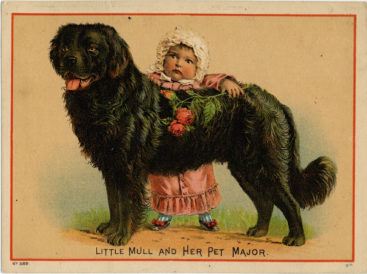 Front of trade card is color drawing of little girl in pink frock and white bonnet looking over a black dog facing left. Girl holds a rose in her hand. Back of trade card (and others by Capital City Tea Co.) has stamped logo. National Museum of American History, Archives Center.
