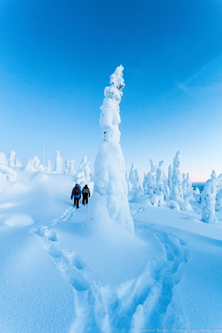 Snowshoeing alllows you to see the landscape in a new way - Visiting Finland in Winter: Top 15 Winter Activities in Finland