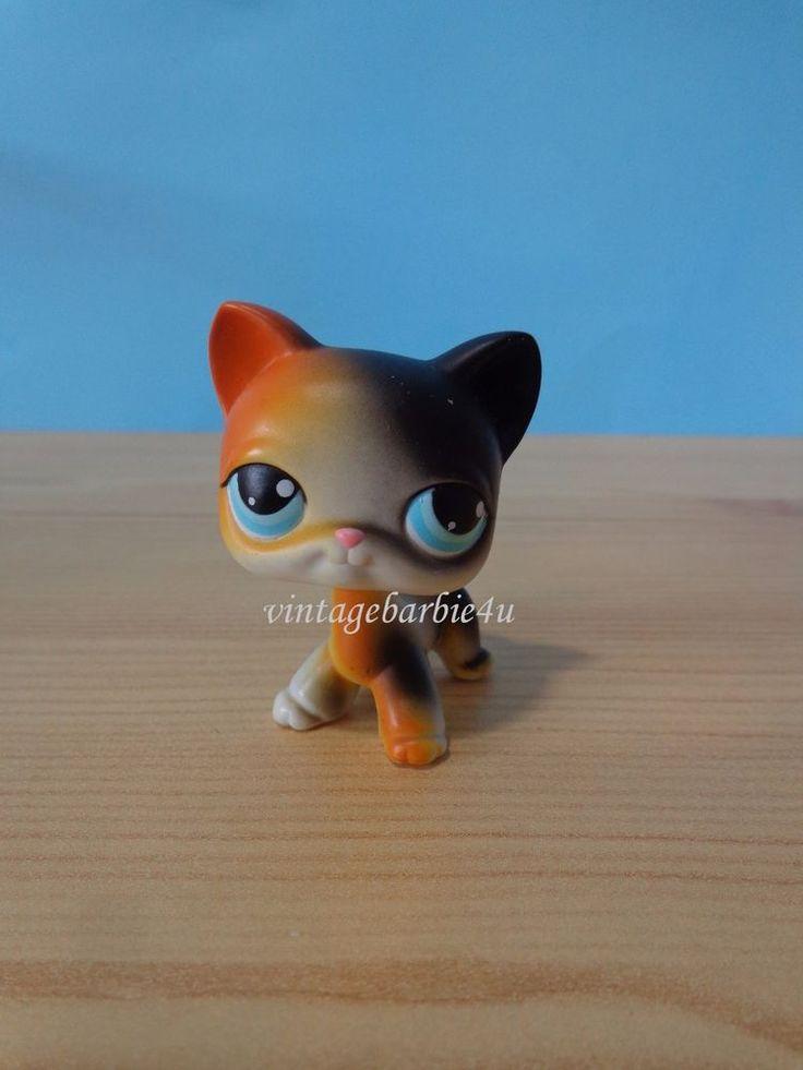Littlest Pet Shop LPS #106 Calico Orange Black Cat Short Hair Kitten Blue Eyes  #Hasbro