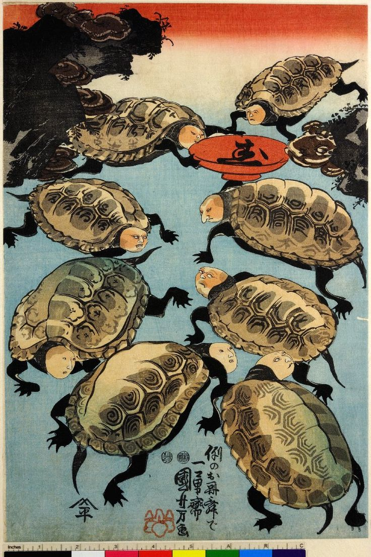Woodblock print, triptych. Human-faced tortoises clustered around a sake saucer. With three signatures. Nishiki-e on paper. - 2