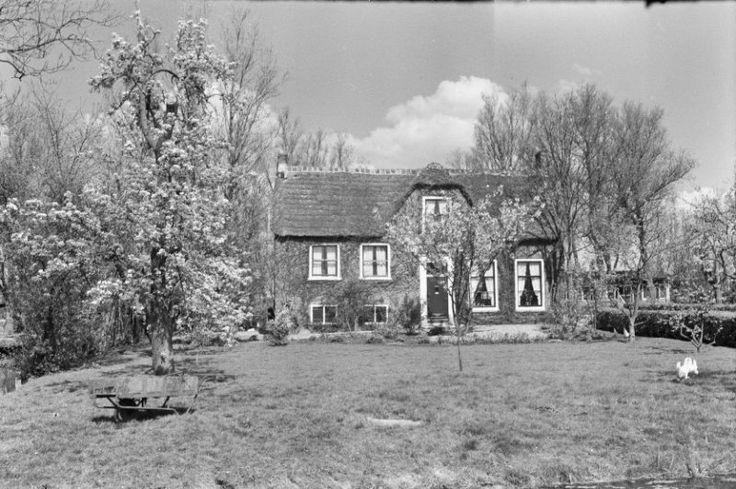 Kinderboerderij   Capelle aan den IJssel