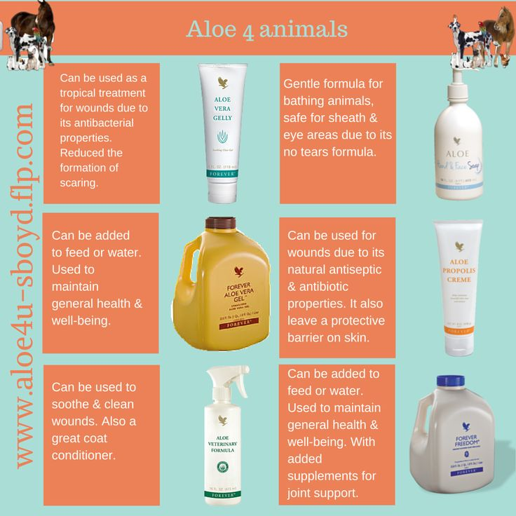 Aloe 4 Animals - These products are so gentle on your animals. Great for speeding up the wound healing process and reducing the formation of scaring. www.aloe4u-sboyd.flp.com