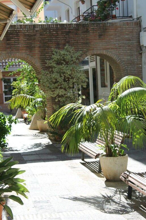 Palms, Torrox beautiful